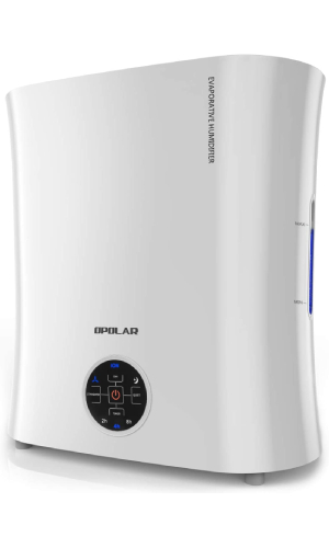 Cheapest Air Purifier And Humidifier Combo