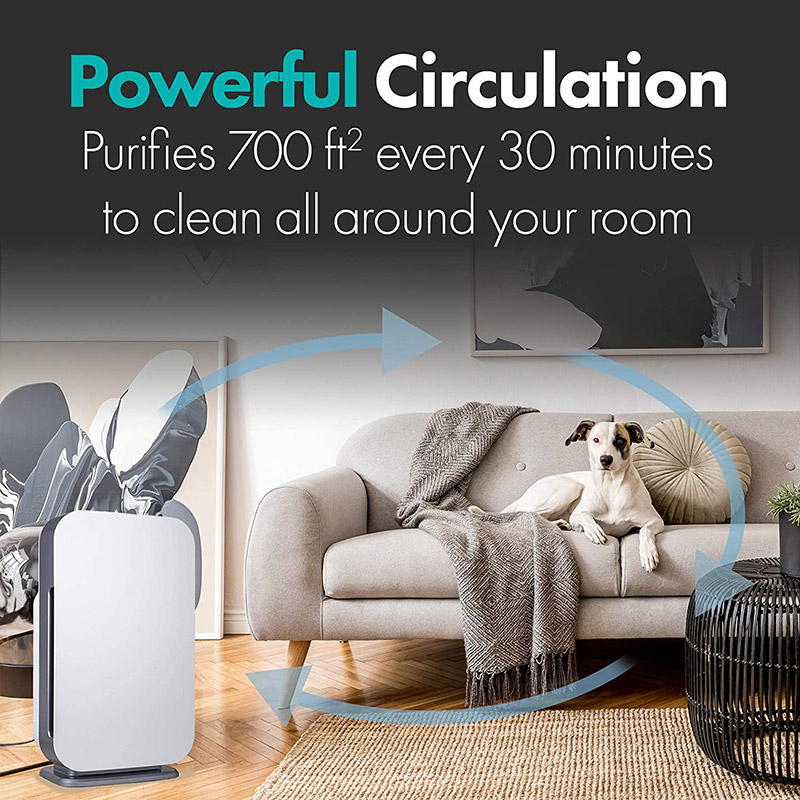 Alen BreatheSmart FLEX is the best air purifier for small and large rooms