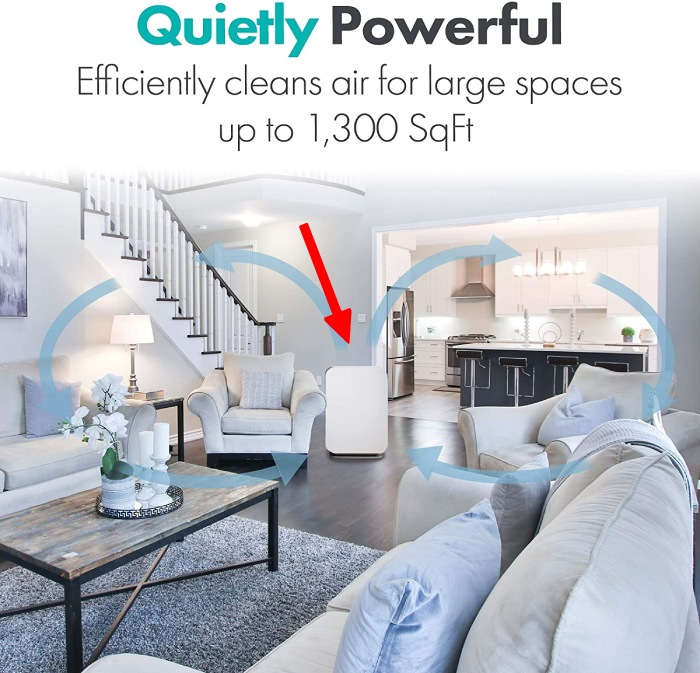 big square footage of a large room with air purifier