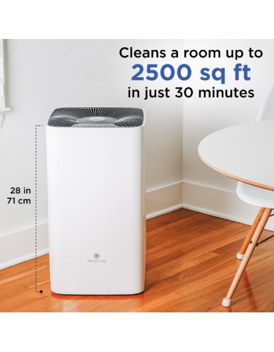 biggest air purifier for smoke
