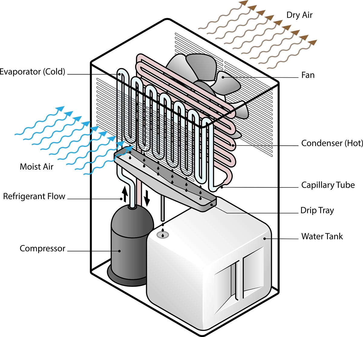 how does the dehumidifier work