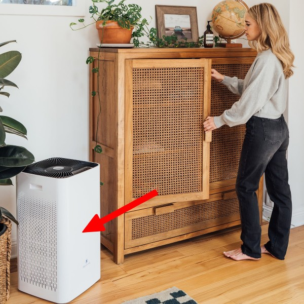 large room air purifier with human for scale