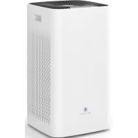 largest portable air purifier