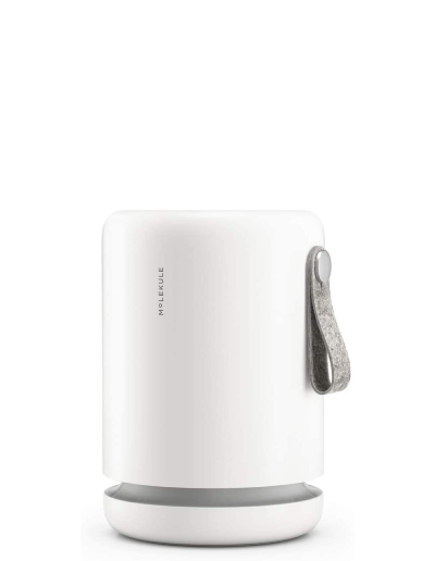 molekule air purifier for small room