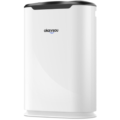 review of AirMax8L air purifier the best okaysou unit